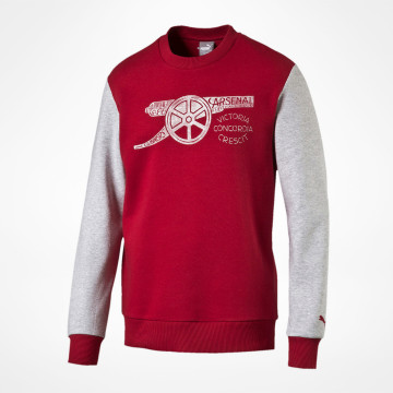 Fan Sweatshirt 2016/17 - Barn