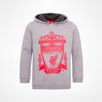 Boys Crest Hoody - Grey