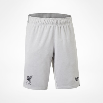 Shorts Travel 19/20 - Grå