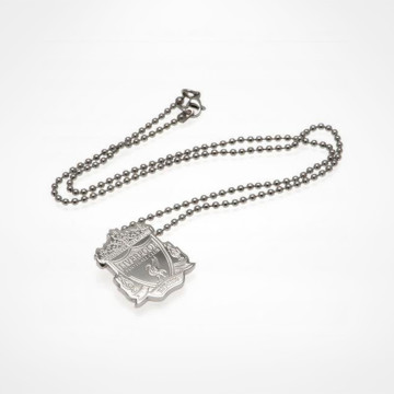 Stainless Steel Pendant & Chain CR