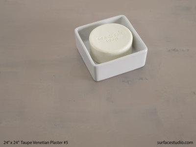 Taupe Venetian Plaster #5