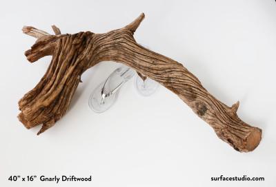 Gnarly Driftwood