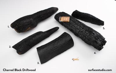 Charred Black Driftwood (5) $45 each