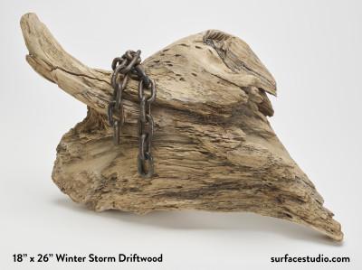 Winter Storm Driftwood