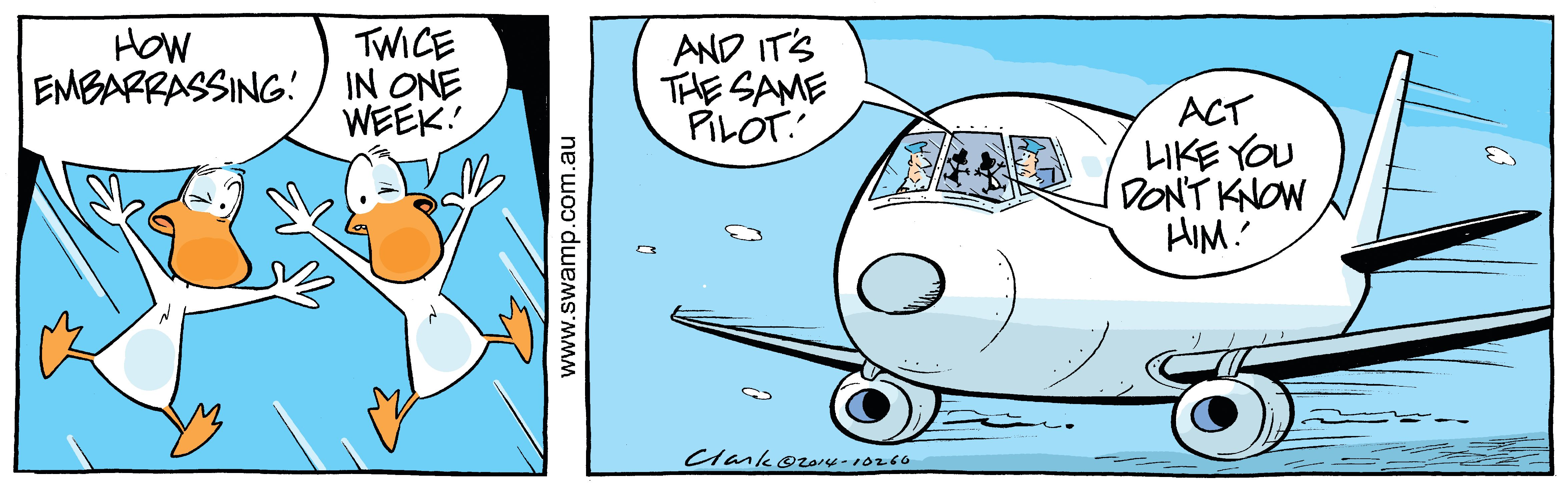 Birdstrike Again Comic