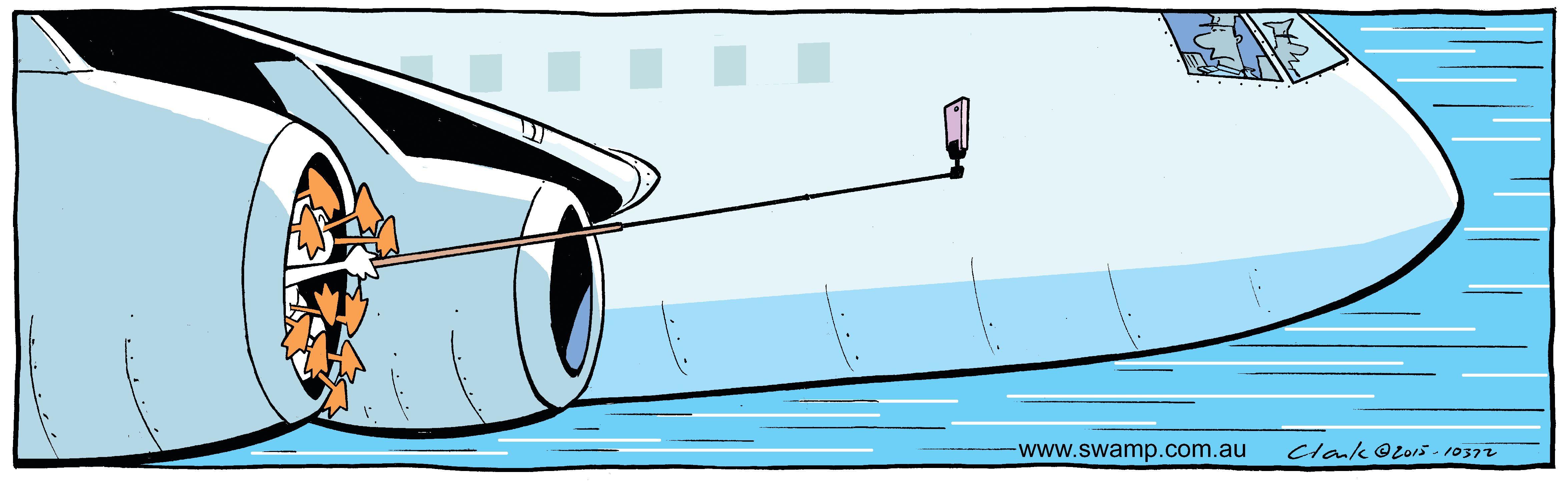 Birdstrike Selfie Comic