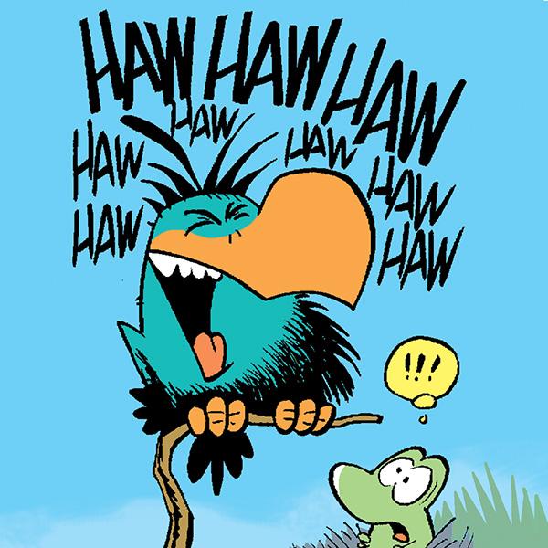 Bludgerigar Bird