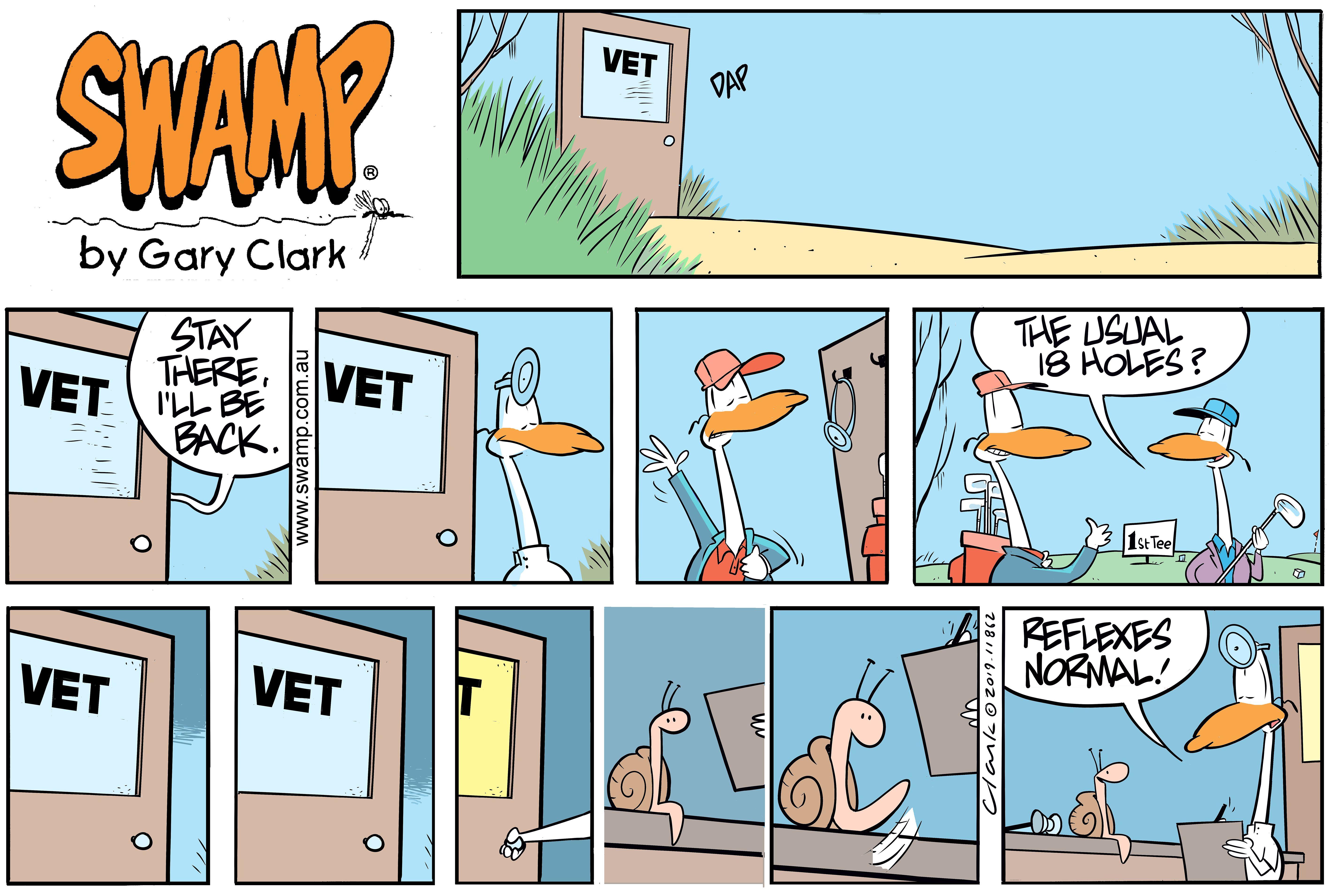 Swamp Vet Tests Reflexes