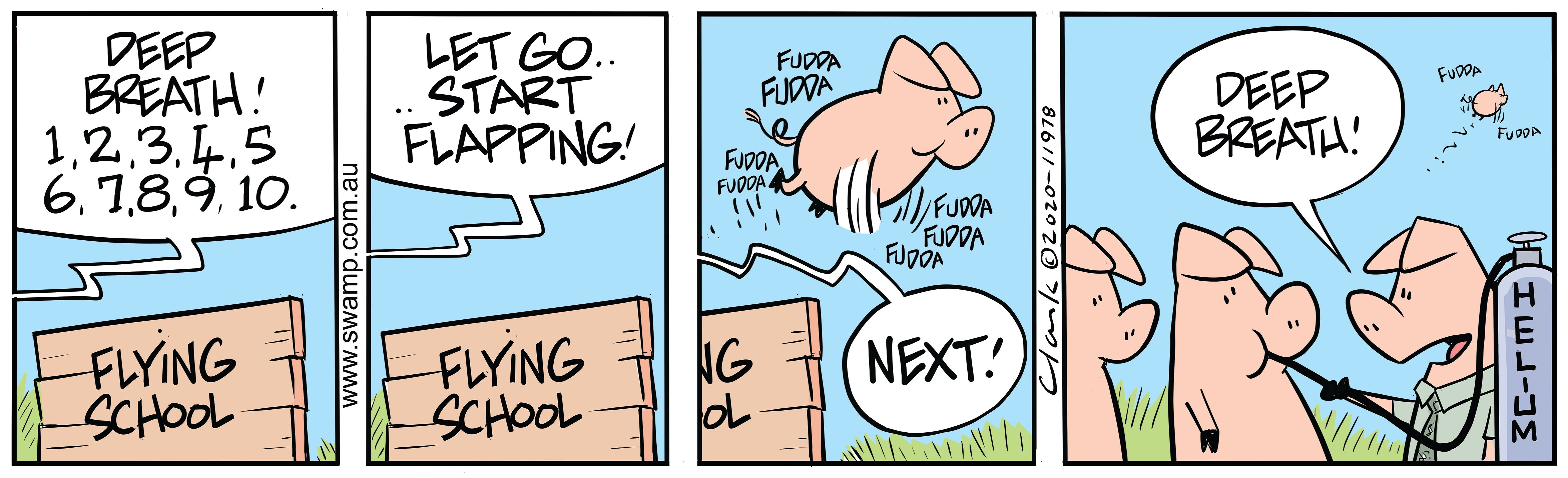 Pigs Need Deep Breath