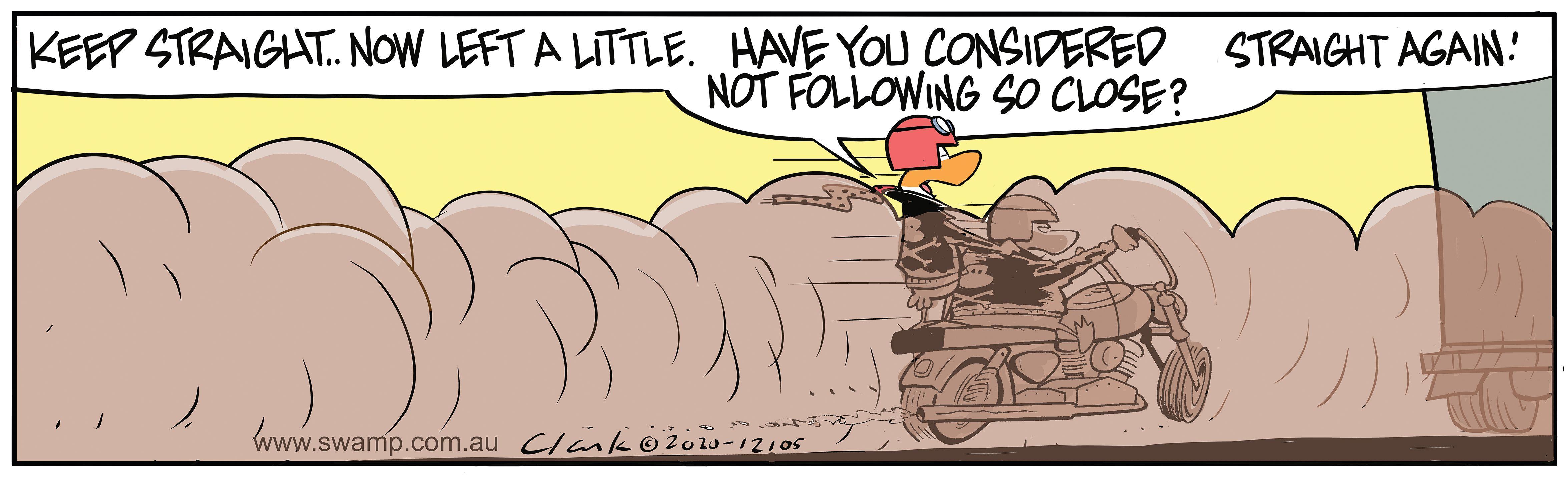 Wild Ducks Keep Straight