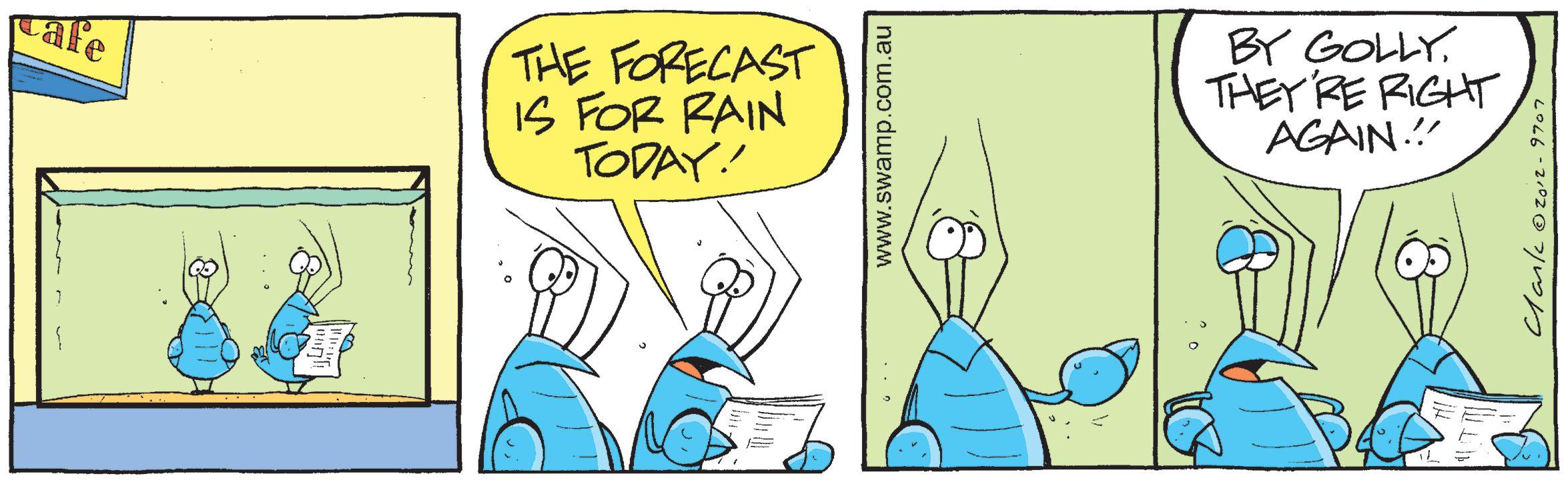 Bob Crayfish Rain Coming