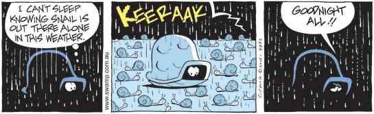 Swamp Cartoon - All is Revealed!December 14, 2009