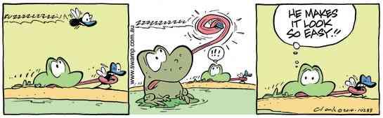Swamp Cartoon - Mort Frog FlyDecember 3, 2014