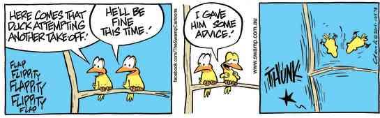 Swamp Cartoon - Ding Duck Bird Advice ComicNovember 24, 2015
