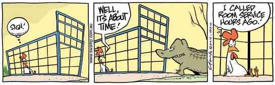 Swamp Cartoon - Chicken Waiting for Room ServiceApril 26, 2016