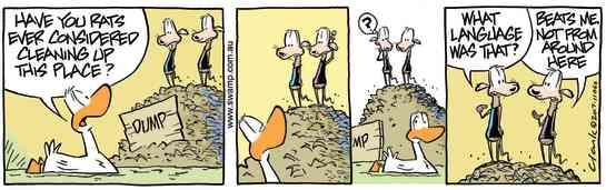 Swamp Cartoon - Swamp Rats Language ComicJune 14, 2017