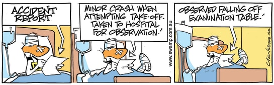 Swamp Cartoon - Ding Duck Observation ComicFebruary 26, 2018