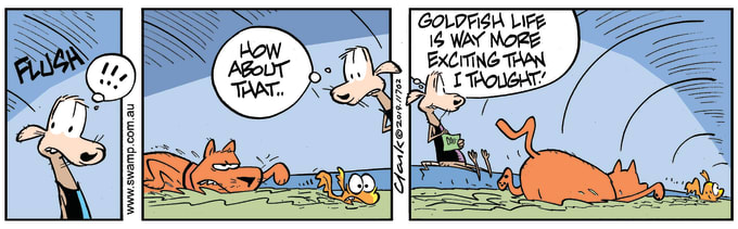 Swamp Cartoon of the Day - Goldfish Exciting Life