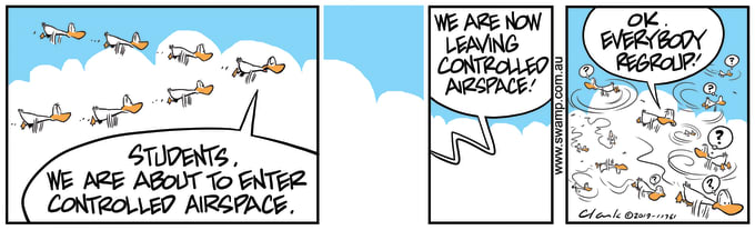 Swamp Cartoon of the Day - Aviator Ducks Controlled Air Space