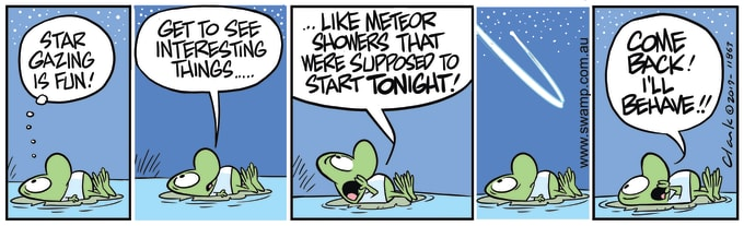 Swamp Cartoon of the Day - Meteor Shower Tonight