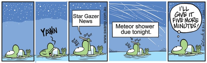 Swamp Cartoon of the Day - Mort Frog Star Gazer News