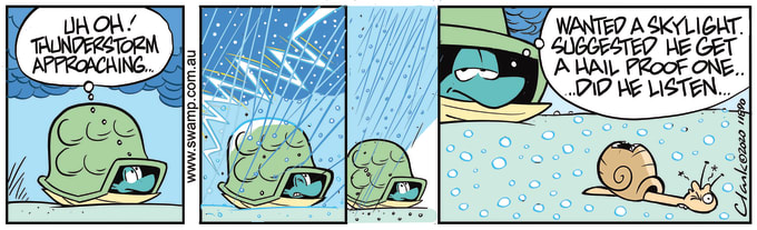 Swamp Cartoon of the Day - Turtle and Snail Thunderstorm Approaching