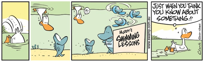 Swamp Cartoon of the Day - Muddy's Swimming Lessons