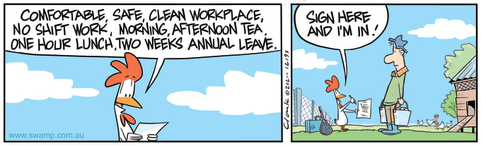 Swamp Cartoon of the Day - Chicken Workplace Agreement