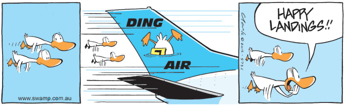 Swamp Cartoon of the Day - Ding Duck Airline Flying