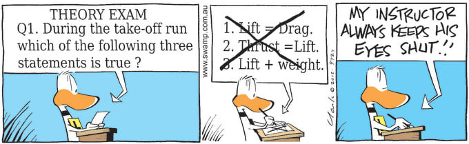 Swamp Cartoon of the Day - Take-off Run Exam Question