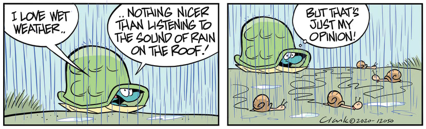 Swamp Cartoon of the Day - Turtle Loves Wet WeatherAugust 13, 2020