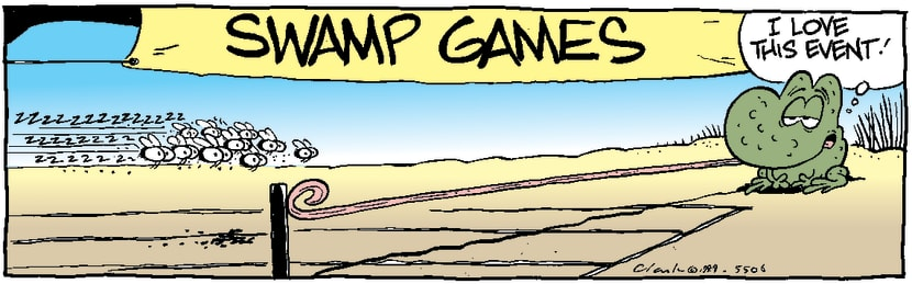Swamp Cartoon - Fly RaceJanuary 1, 1999
