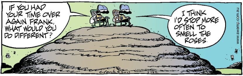 Swamp Cartoon - Fly Life ReflectionsFebruary 15, 2000