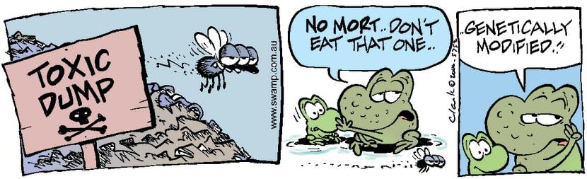 Swamp Cartoon - Toxic FlyFebruary 26, 2000