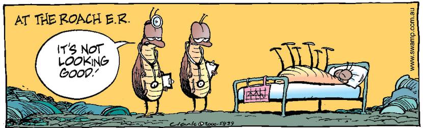 Swamp Cartoon - Cockroach DiagnosisJune 6, 2000