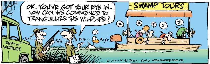 Swamp Cartoon - Tranquillize Swamp WildlifeFebruary 27, 2001