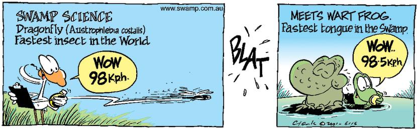 Swamp Cartoon - Swamp ScienceApril 25, 2001