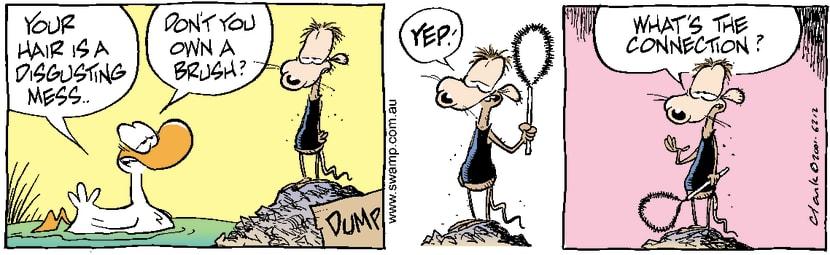 Swamp Cartoon - Messy HairAugust 15, 2001