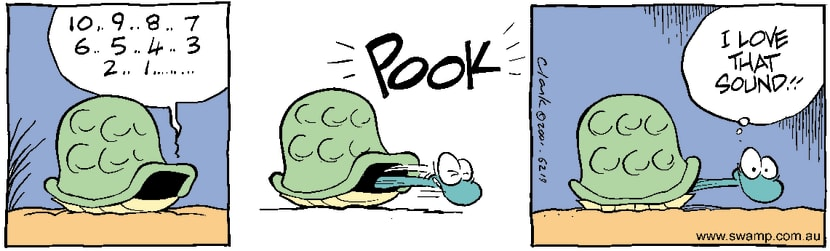 Swamp Cartoon - Turtle AmusementAugust 23, 2001