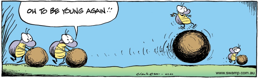 Swamp Cartoon - YouthOctober 10, 2001
