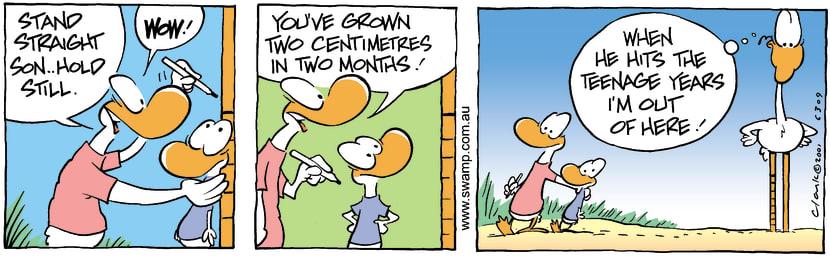 Swamp Cartoon - Growth LevelsDecember 6, 2001