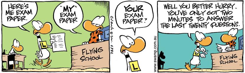 Swamp Cartoon - Exam PaperJanuary 2, 2002
