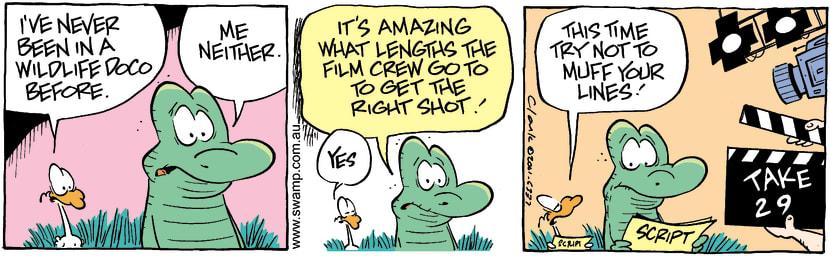 Swamp Cartoon - Wildlife DocumentaryJanuary 8, 2002