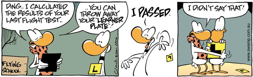 Swamp Cartoon - Ding PassedJanuary 28, 2002