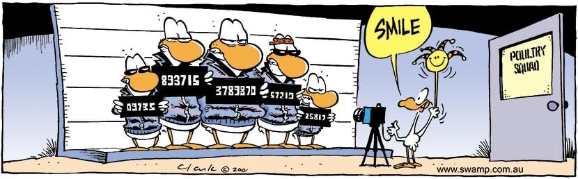 Swamp Cartoon - Say CheeseFebruary 4, 2002