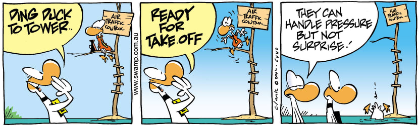Swamp Cartoon - Ding Duck To TowerMay 8, 2002