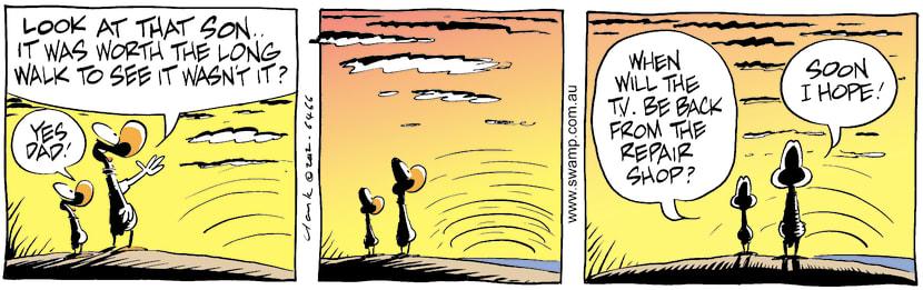 Swamp Cartoon - Sun SetJune 7, 2002