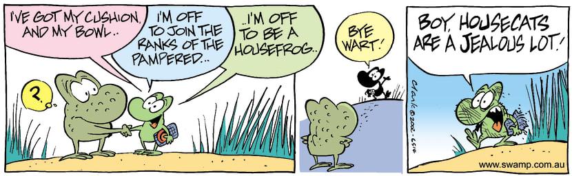Swamp Cartoon - House Frog 1August 2, 2002