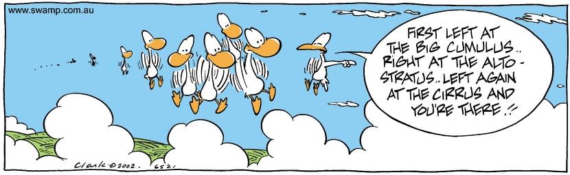 Swamp Cartoon - StuckAugust 10, 2002