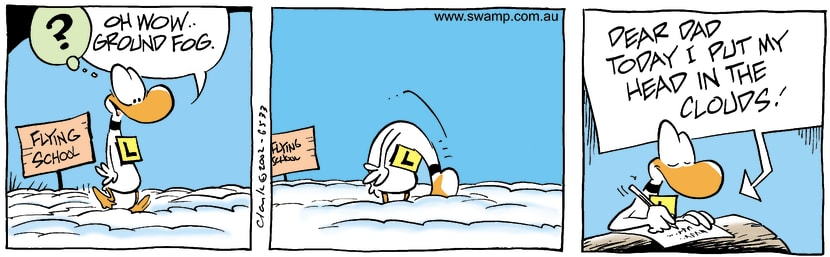 Swamp Cartoon - FoggyAugust 24, 2002